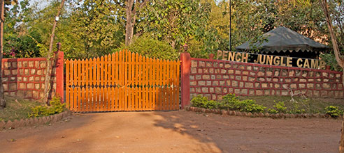 PENCH JUNGLE CAMP